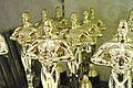 Oscar Meyer Winners