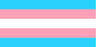 Transgender Dolls and Bathroom Rights