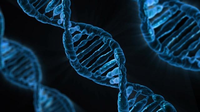 [DNA.] Photo via pixabay.com under the Creative Commons license [http://pixabay.com/en/dna-biology-medicine-gene-163466/]
