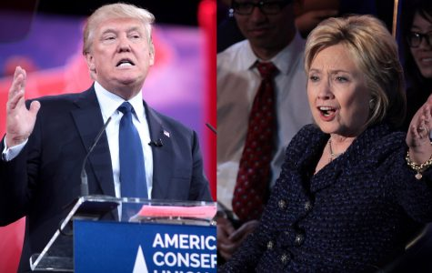Trump v. Clinton: the Cage Match of the Century