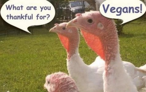 3 Tips for a Successful Vegan Thanksgiving Dinner