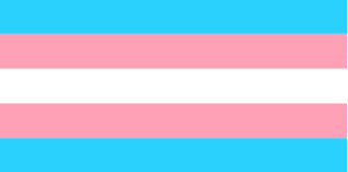 The Transgender Pride Flag.Photo Via Wikimedia Commons used under the Creative Commons License.
