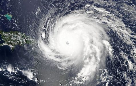 Hurricanes and You