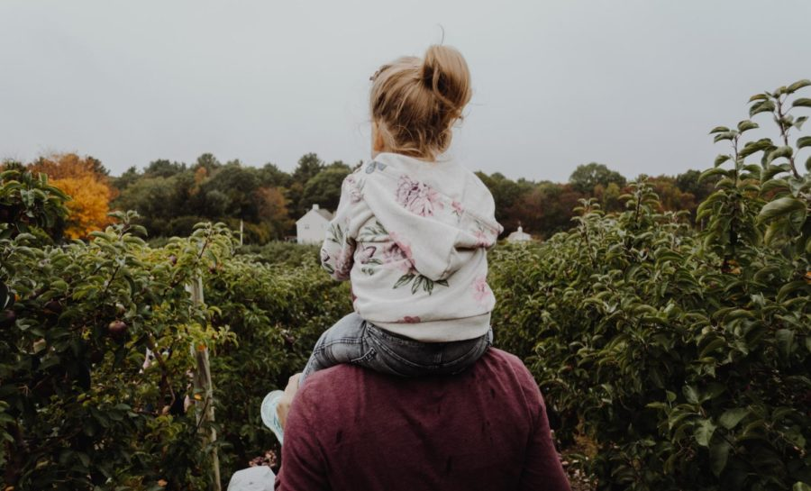 A kid riding on her parents shoulders.