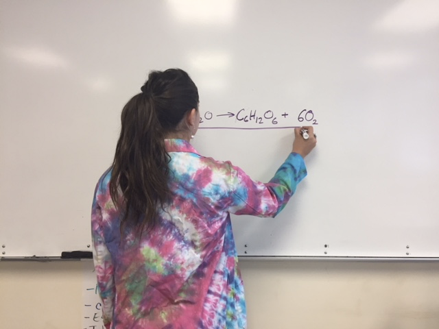 AP Chemistry student Talia Markowski writes a chemical equation on the white board.
