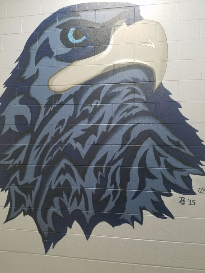 A sophisticated mural of the Kadet is painted on an AAHS wall. It is stylized to closely resemble a falcon.