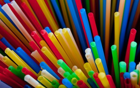 Do You Really Need That Plastic Straw?