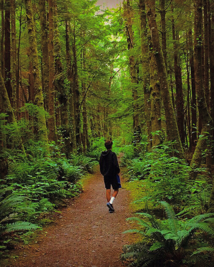 Snapshot Contest Winner Autumn Curtis capturing her brother walking through the beautiful woods of Forks, Washington in June of 2018.