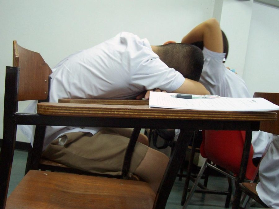 Sleeping+in+class+can+affect+students%27+quality+of+work.