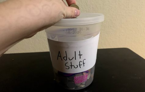 Adulting: The Senior's Conundrum