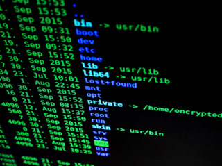 Labeled for reuse by Pexels and Pixabay. Blue and green computer codes typed into a black screen computer through a secured browser.