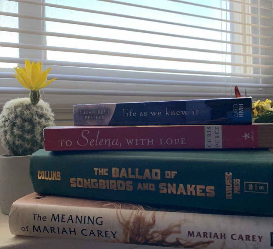 Sophomore Deanna Ponce's favorite books stacked on each other in front of a window with a miniature cactus on the side.