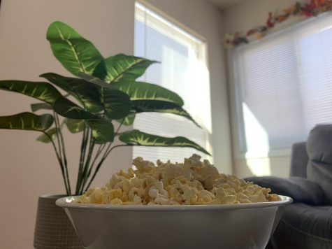 A bowl of popcorn in front of a plant and couch.