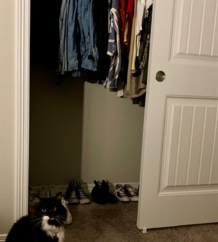 Junior Deanna Ponces cat, Charley, graciously shows off her owners closet.